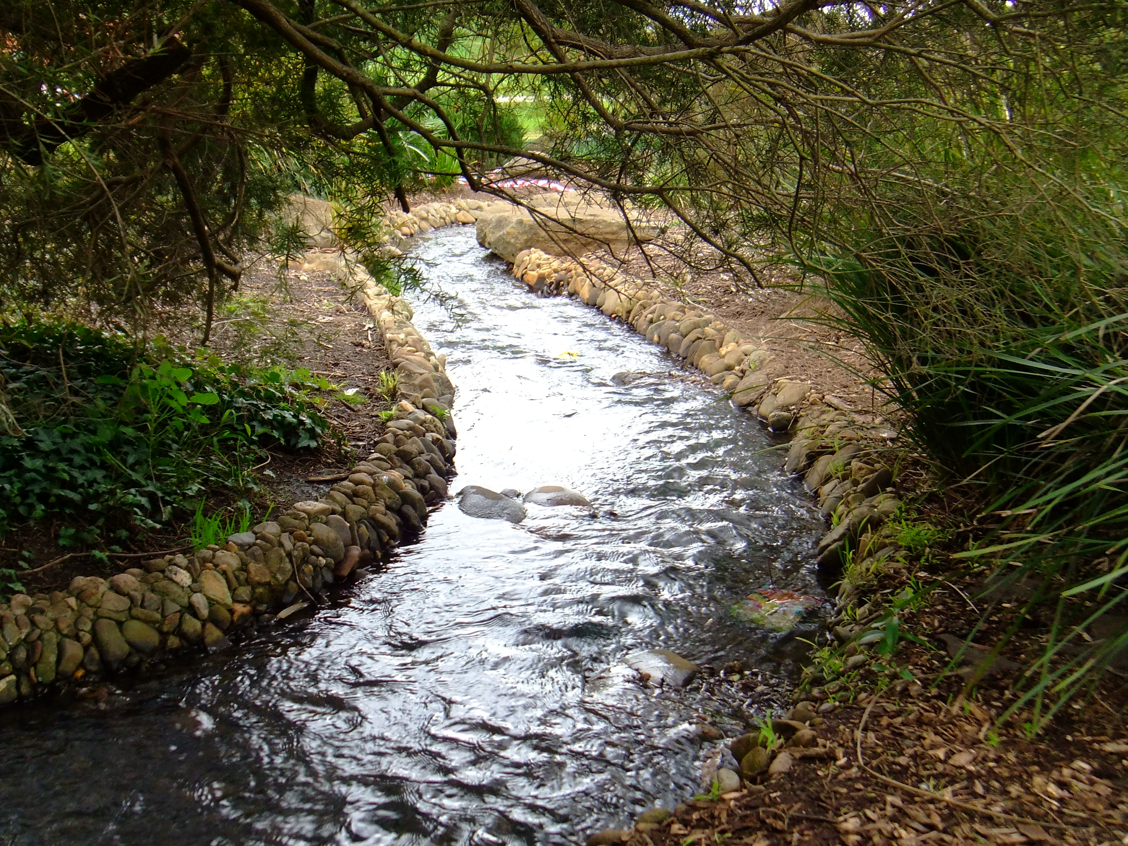 Streaming nature